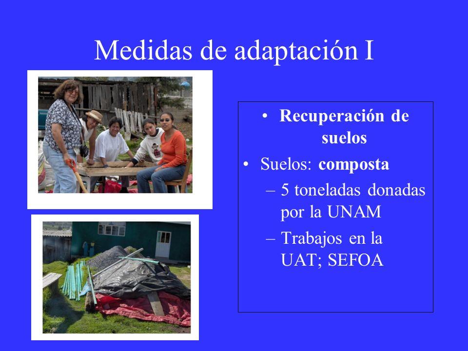 Medidas de adaptación I Recuperación de suelos Suelos: composta –5 toneladas donadas por la UNAM –Trabajos en la UAT; SEFOA