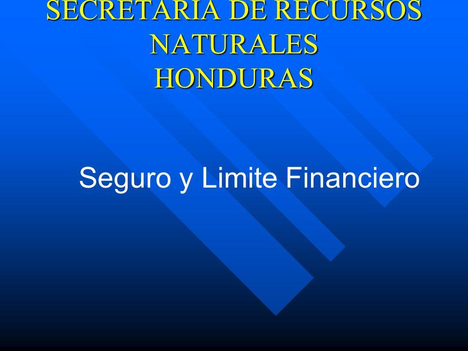 Seguro y Limite Financiero SECRETARIA DE RECURSOS NATURALES HONDURAS