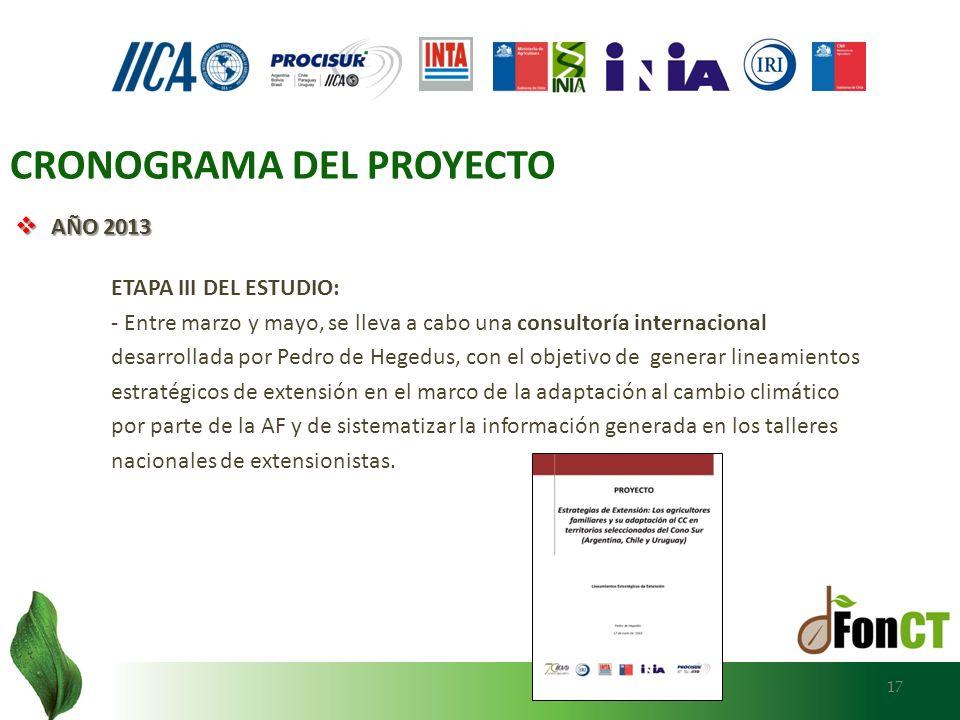 AÑO 2013 AÑO 2013 ETAPA III DEL ESTUDIO: - Entre marzo y mayo, se lleva a cabo una consultoría internacional desarrollada por Pedro de Hegedus, con el