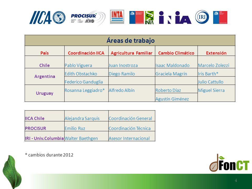 AÑO 2012 AÑO 2012 ETAPA II DEL ESTUDIO: - Entre junio y diciembre, se lleva a cabo una consultoría internacional desarrollada por Roberto Díaz, con la finalidad de sistematizar y analizar los informes nacionales y, además, integrar los resultados de los talleres nacionales de validación.