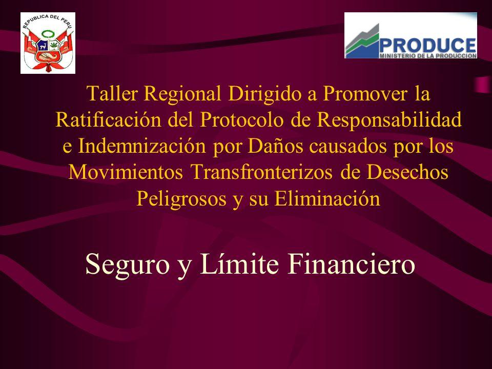 Taller Regional Dirigido a Promover la Ratificación del Protocolo de Responsabilidad e Indemnización por Daños causados por los Movimientos Transfronterizos de Desechos Peligrosos y su Eliminación Seguro y Límite Financiero