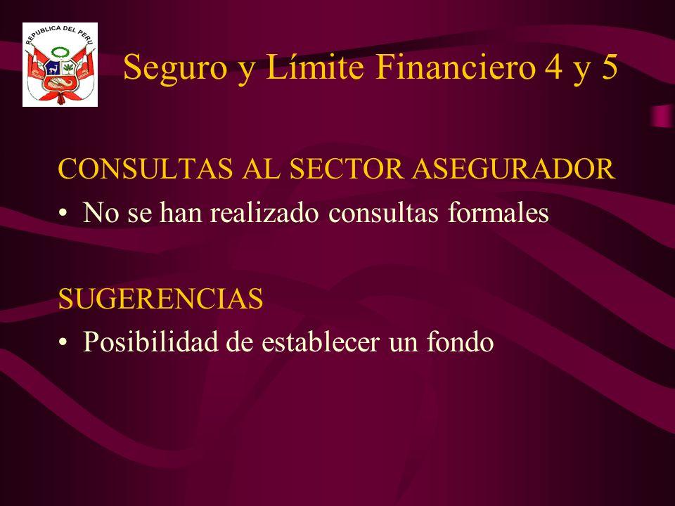 Seguro y Límite Financiero 4 y 5 CONSULTAS AL SECTOR ASEGURADOR No se han realizado consultas formales SUGERENCIAS Posibilidad de establecer un fondo
