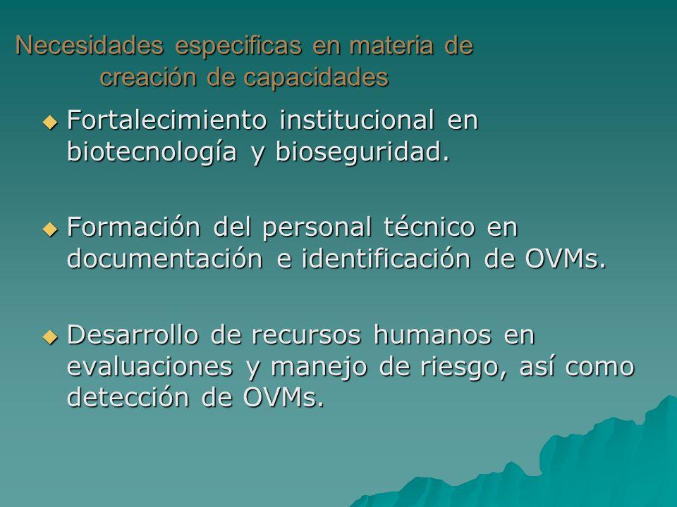 Necesidades especificas en materia de creación de capacidades Fortalecimiento institucional en biotecnología y bioseguridad. Fortalecimiento instituci