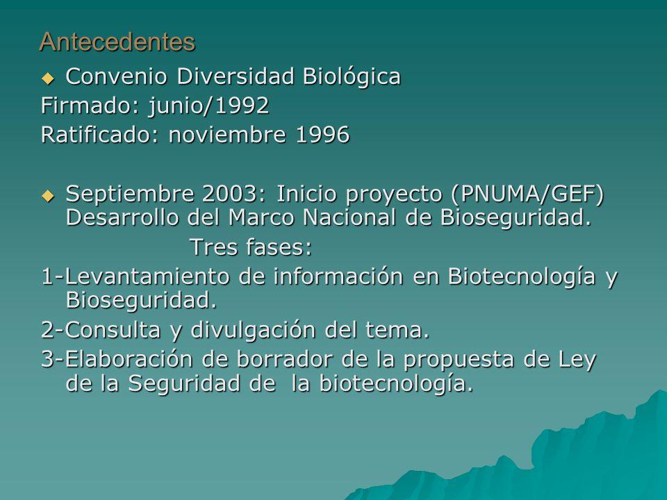 Antecedentes Convenio Diversidad Biológica Convenio Diversidad Biológica Firmado: junio/1992 Ratificado: noviembre 1996 Septiembre 2003: Inicio proyecto (PNUMA/GEF) Desarrollo del Marco Nacional de Bioseguridad.