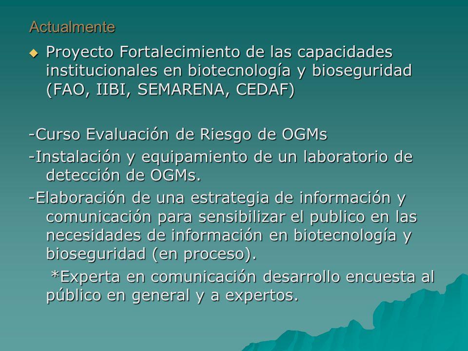 Actualmente Proyecto Fortalecimiento de las capacidades institucionales en biotecnología y bioseguridad (FAO, IIBI, SEMARENA, CEDAF) Proyecto Fortalecimiento de las capacidades institucionales en biotecnología y bioseguridad (FAO, IIBI, SEMARENA, CEDAF) -Curso Evaluación de Riesgo de OGMs -Instalación y equipamiento de un laboratorio de detección de OGMs.