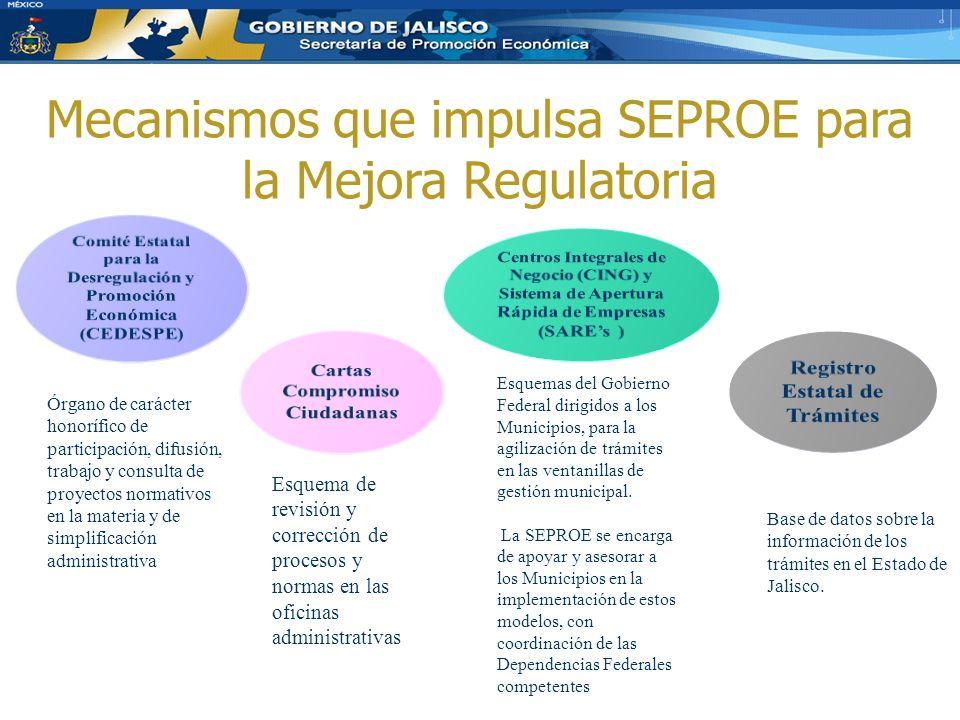 Mecanismos que impulsa SEPROE para la Mejora Regulatoria Esquema de revisión y corrección de procesos y normas en las oficinas administrativas Base de datos sobre la información de los trámites en el Estado de Jalisco.