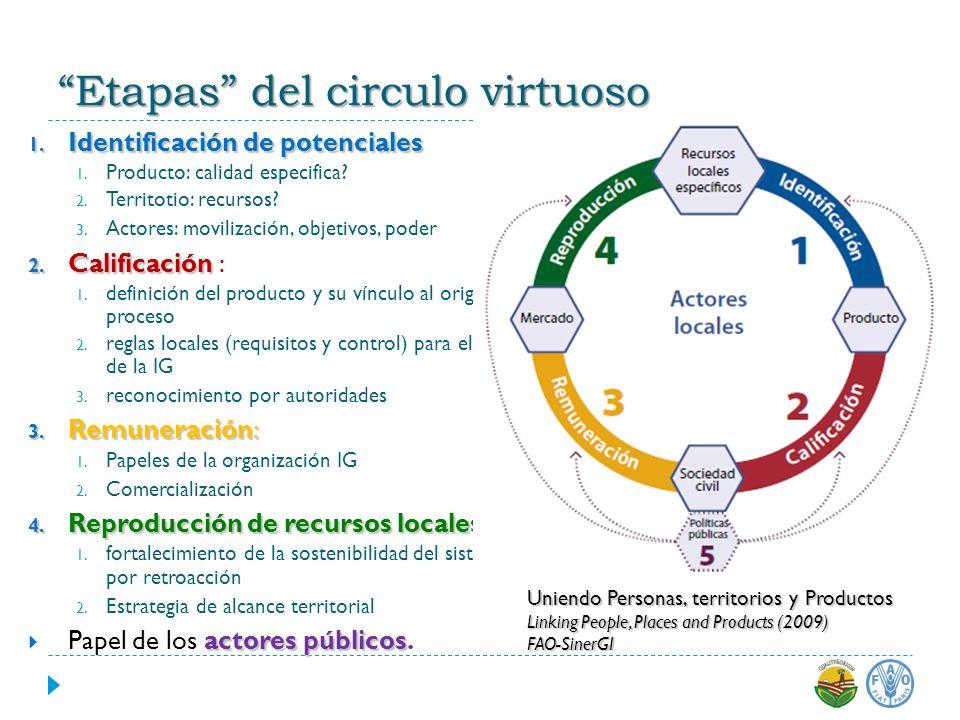 1. Identificaciónde potenciales 1. Identificación de potenciales 1. Producto: calidad especifica? 2. Territotio: recursos? 3. Actores: movilización, o