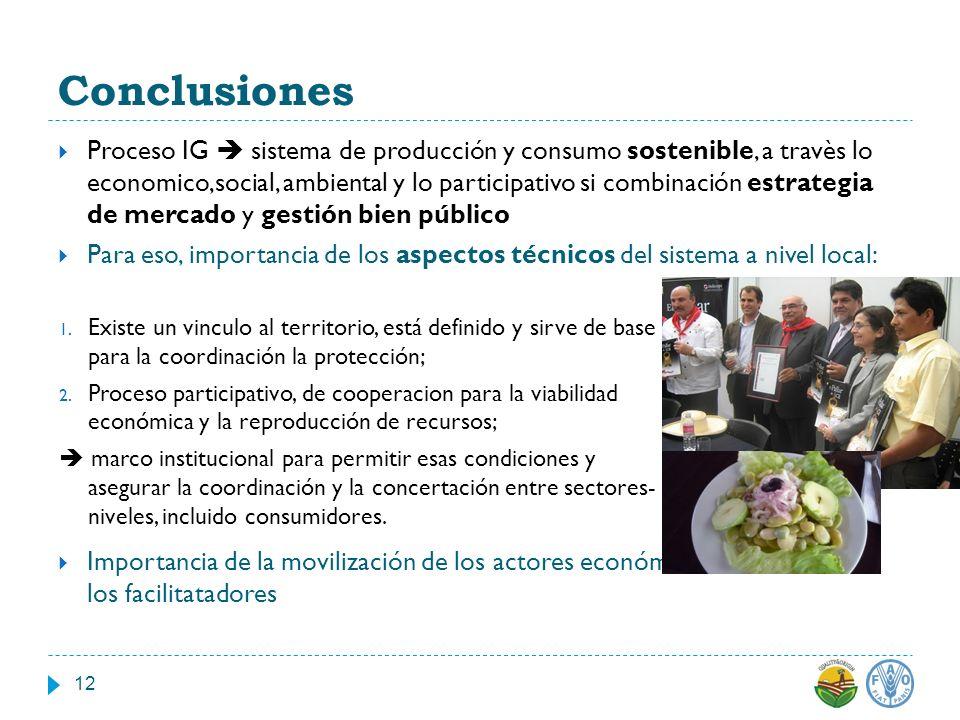Conclusiones Proceso IG sistema de producción y consumo sostenible, a travès lo economico,social, ambiental y lo participativo si combinación estrateg