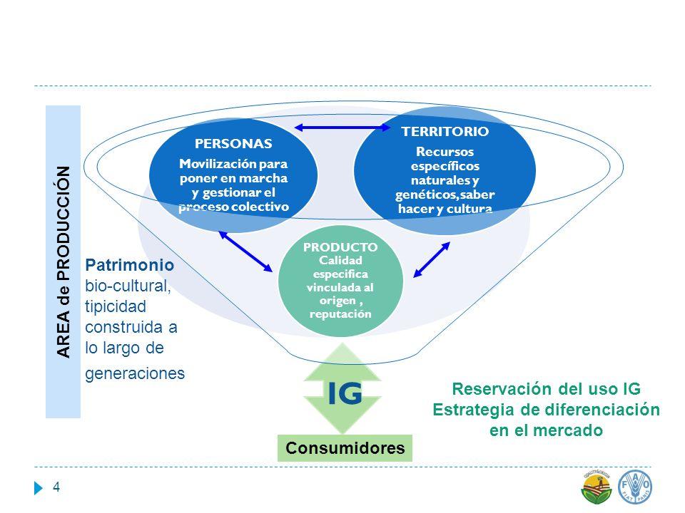 IG PRODUCTO Calidad especifica vinculada al origen, reputación PERSONAS Movilización para poner en marcha y gestionar el proceso colectivo TERRITORIO