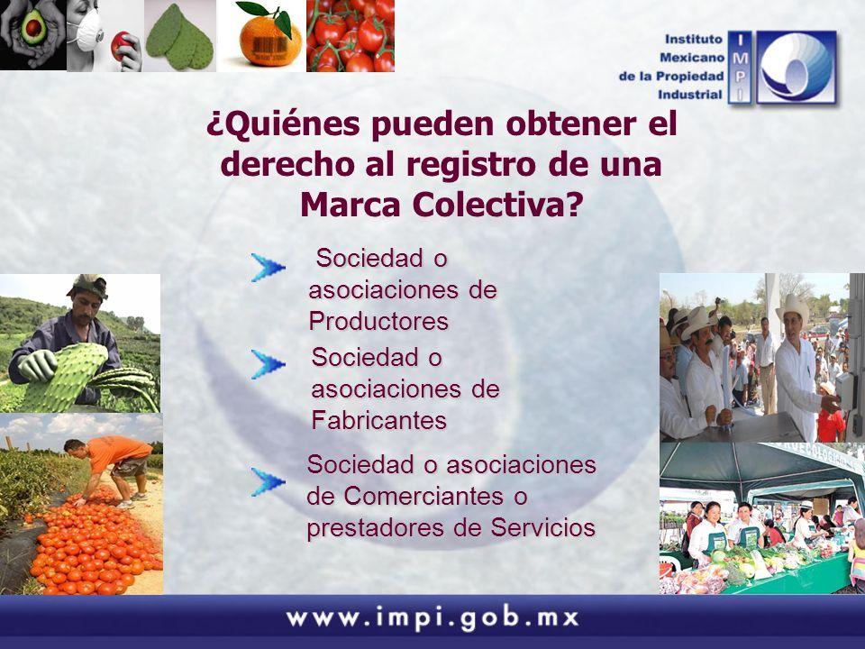 ¿Quiénes pueden obtener el derecho al registro de una Marca Colectiva? Sociedad o asociaciones de Productores Sociedad o asociaciones de Productores S