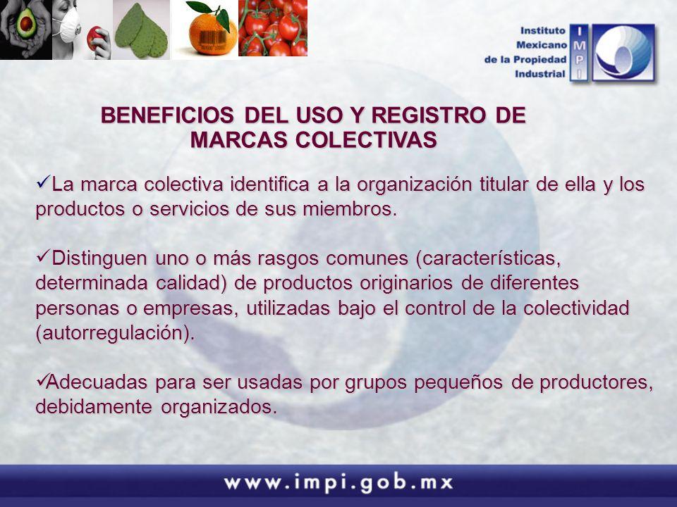 BENEFICIOS DEL USO Y REGISTRO DE MARCAS COLECTIVAS La marca colectiva identifica a la organización titular de ella y los productos o servicios de sus