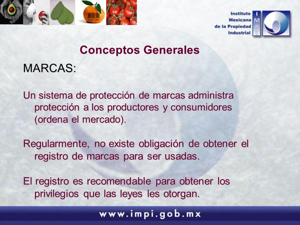 Conceptos Generales MARCAS: Un sistema de protección de marcas administra protección a los productores y consumidores (ordena el mercado). Regularment