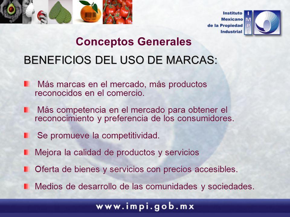 Las Marcas Colectivas y de Certificación en México: Características, Constitución y Normas de Utilización.