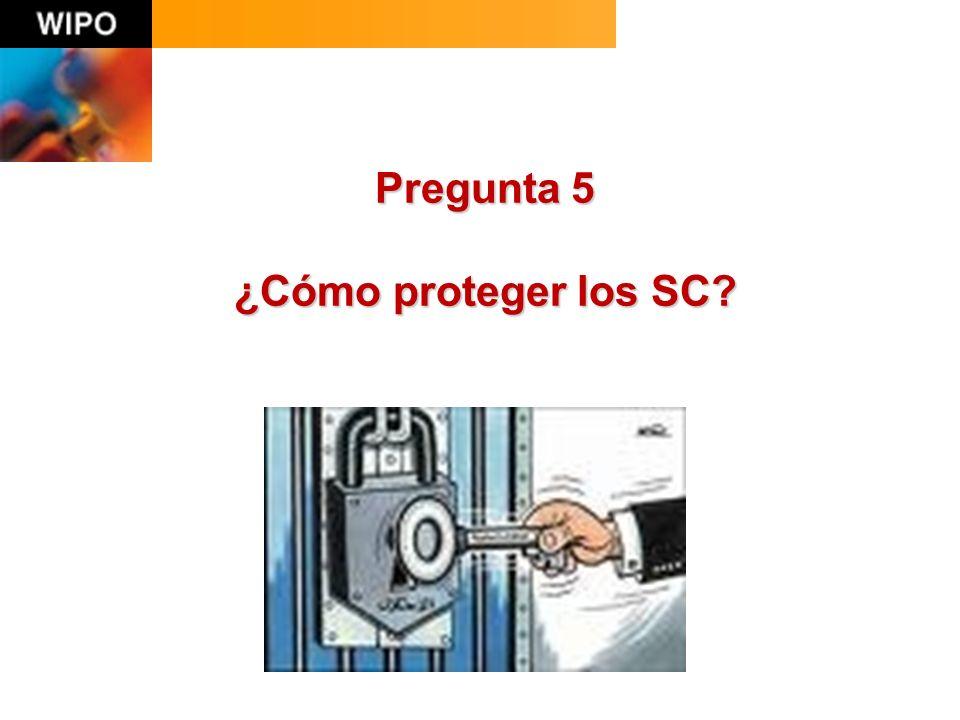Pregunta 5 ¿Cómo proteger los SC?