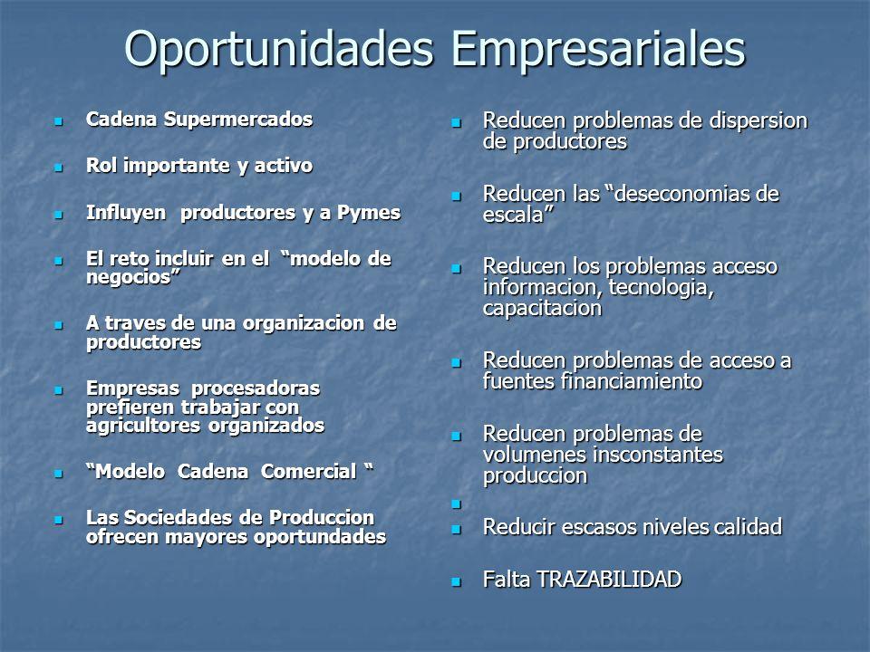 Oportunidades Empresariales Que se necesita para incrementar la participacion pequenos agricultores en la cadena moderna de alimentos .