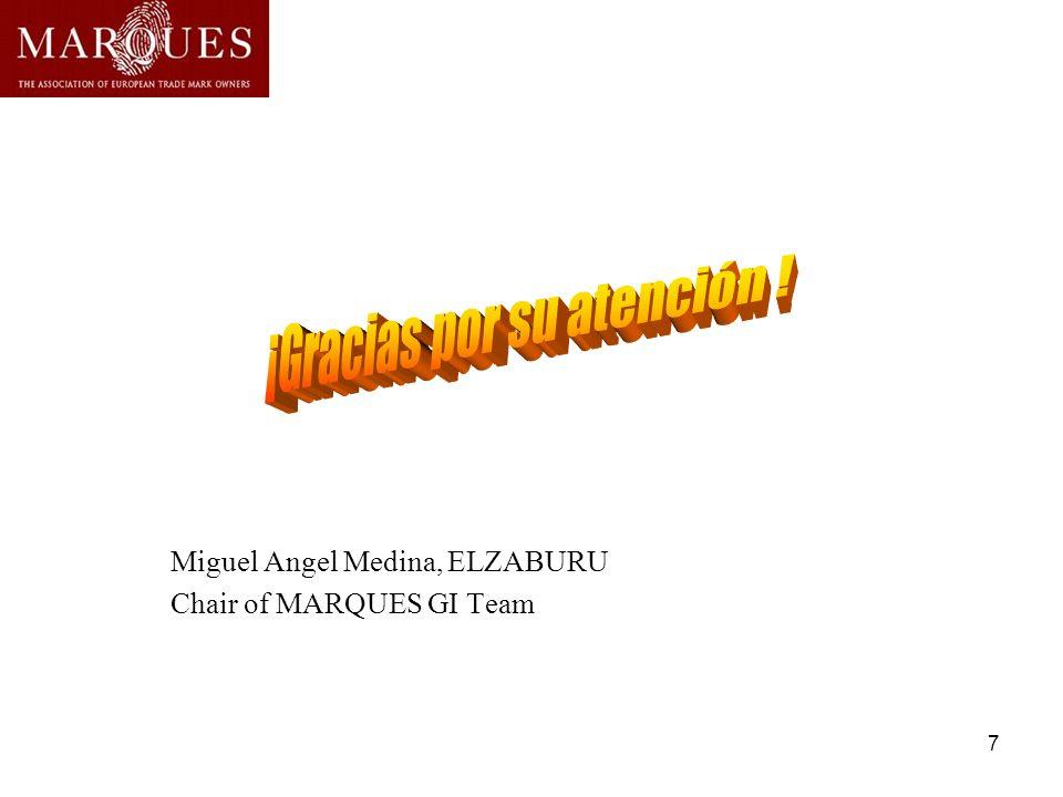 7 Miguel Angel Medina, ELZABURU Chair of MARQUES GI Team