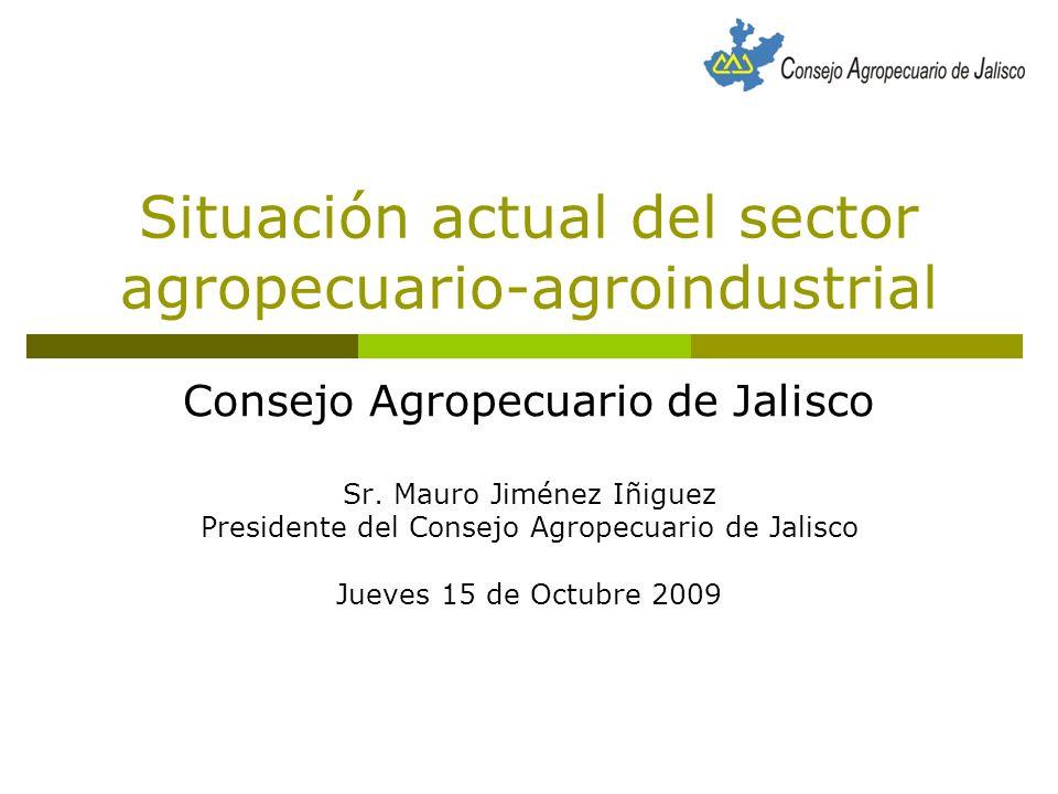 México Problemática de fondo (Estructurales) - Tenencia de la tierra (Atomizada).