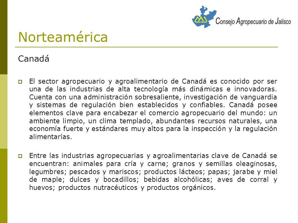 Norteamérica Canadá Canadá es el cuarto mayor exportador agropecuario y agroalimentario del mundo y sus principales exportaciones son los bienes con valor agregado y procesados.