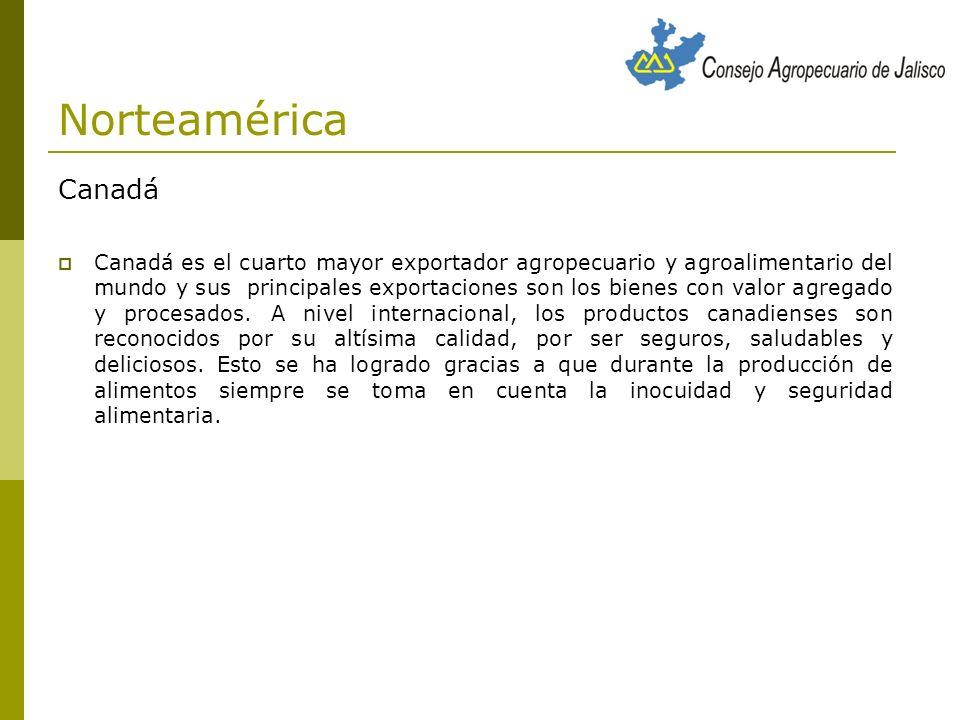 Países de América Latina Alianza estratégica entre México y Chile para complementar la oferta exportable de Aguacates y Berries.