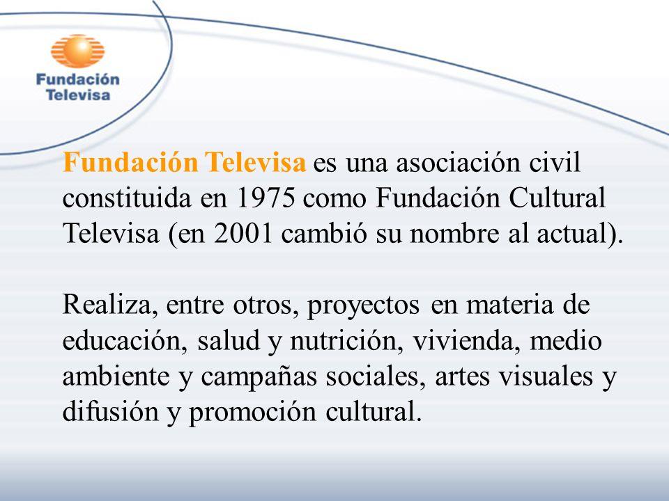 Fundación Televisa es una asociación civil constituida en 1975 como Fundación Cultural Televisa (en 2001 cambió su nombre al actual). Realiza, entre o