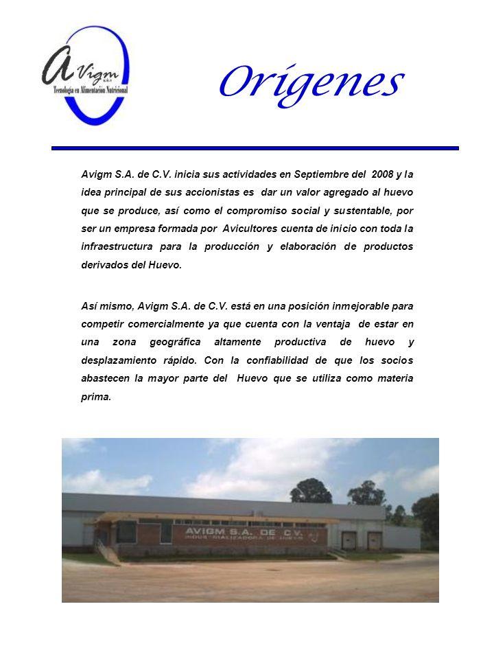 Orígenes Avigm S.A. de C.V. inicia sus actividades en Septiembre del 2008 y la idea principal de sus accionistas es dar un valor agregado al huevo que