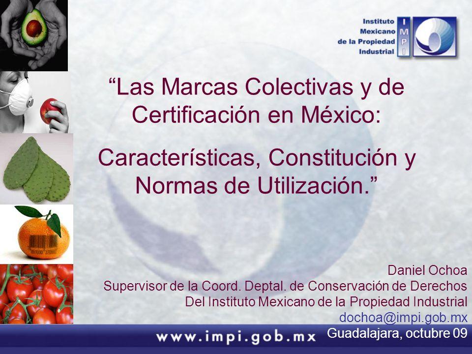 Las Marcas Colectivas y de Certificación en México: Características, Constitución y Normas de Utilización. Daniel Ochoa Supervisor de la Coord. Deptal