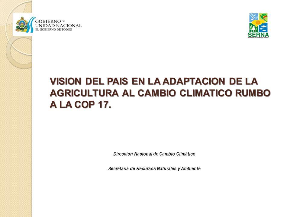 VISION DEL PAIS EN LA ADAPTACION DE LA AGRICULTURA AL CAMBIO CLIMATICO RUMBO A LA COP 17. Dirección Nacional de Cambio Climático Secretaria de Recurso