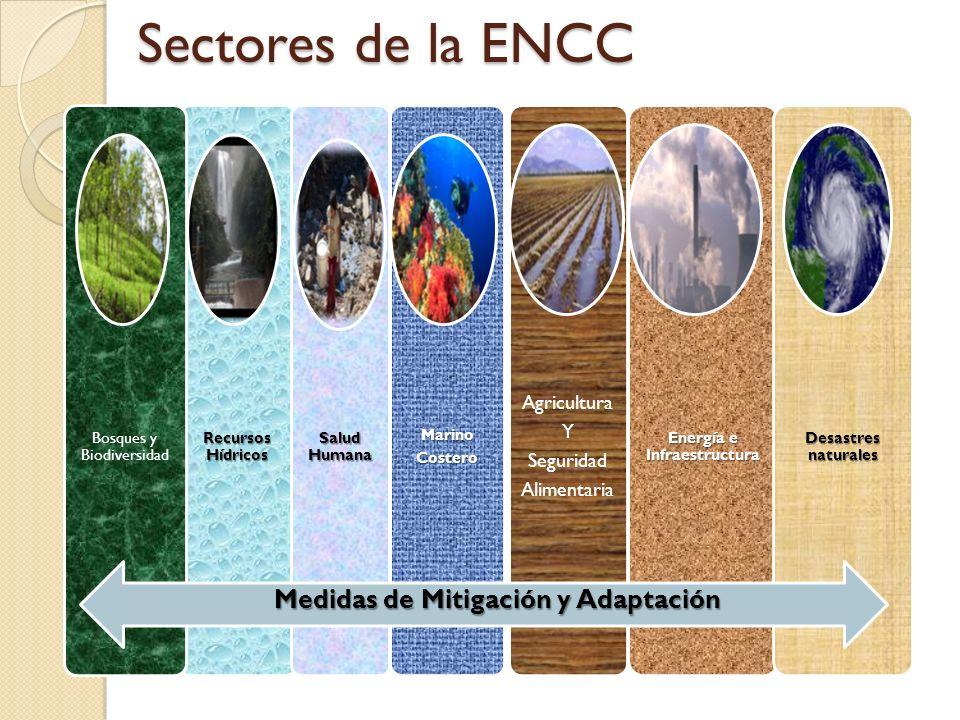 Sectores de la ENCC Recursos Hídricos Bosques y Biodiversidad Salud Humana Energía e Infraestructura Agricultura Y Seguridad AlimentariaMarinoCostero