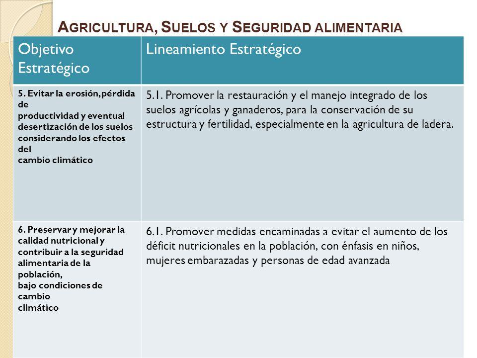 Objetivo Estratégico Lineamiento Estratégico 5. Evitar la erosión, pérdida de productividad y eventual desertización de los suelos considerando los ef