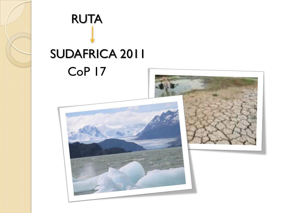 RUTA RUTA SUDAFRICA 2011 CoP 17