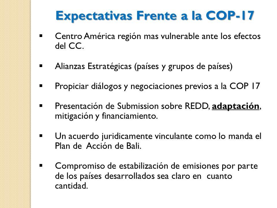 Centro América región mas vulnerable ante los efectos del CC. Alianzas Estratégicas (países y grupos de países) Propiciar diálogos y negociaciones pre