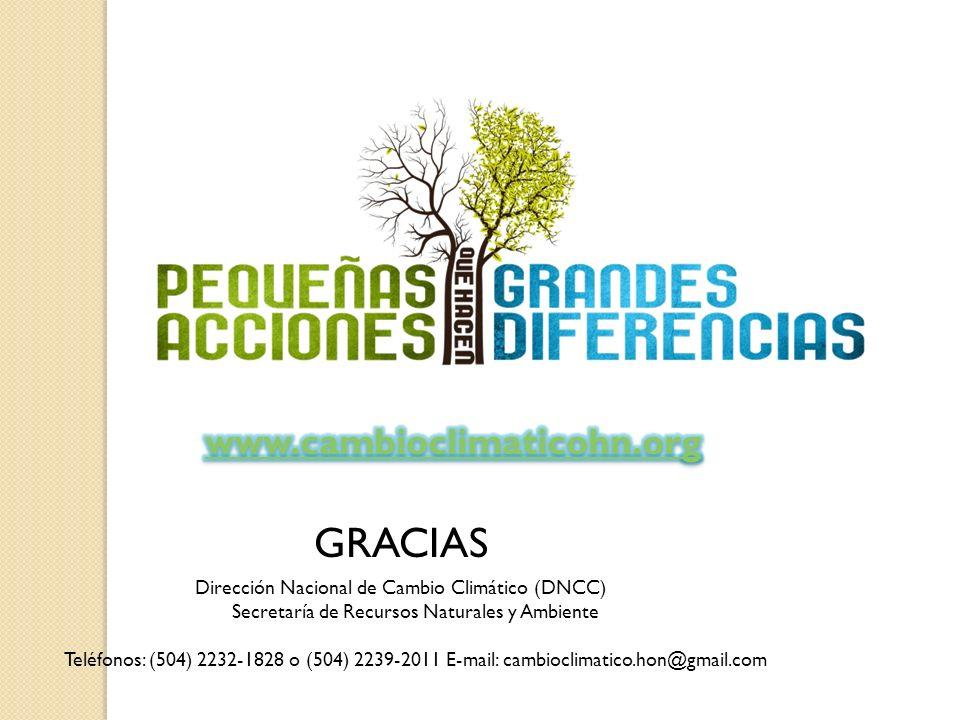 GRACIAS Dirección Nacional de Cambio Climático (DNCC) Secretaría de Recursos Naturales y Ambiente Teléfonos: (504) 2232-1828 o (504) 2239-2011 E-mail: