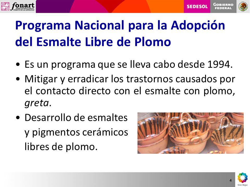 Programa Nacional para la Adopción del Esmalte Libre de Plomo Es un programa que se lleva cabo desde 1994. Mitigar y erradicar los trastornos causados