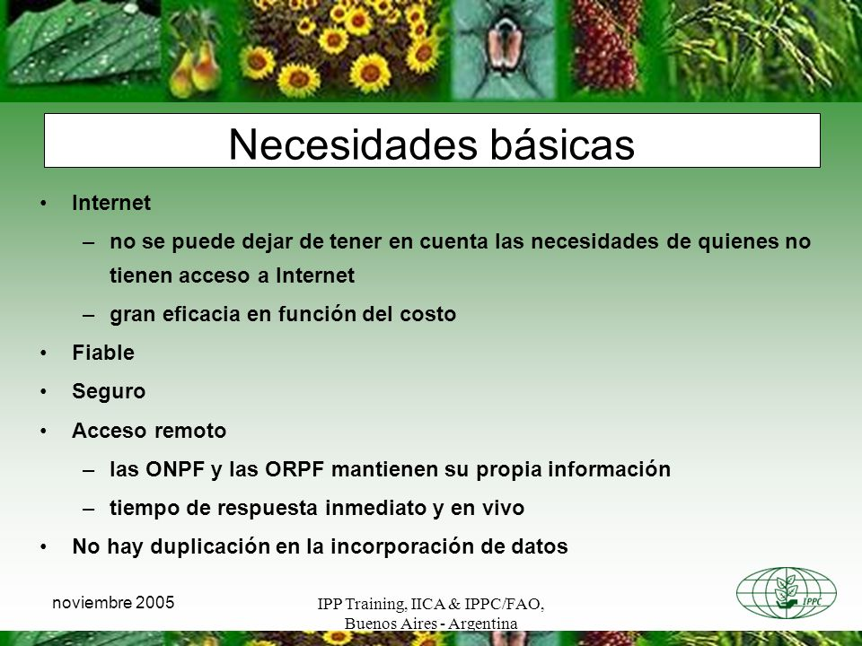 IPP Training, IICA & IPPC/FAO, Buenos Aires - Argentina noviembre 2005 Necesidades básicas Internet –no se puede dejar de tener en cuenta las necesida