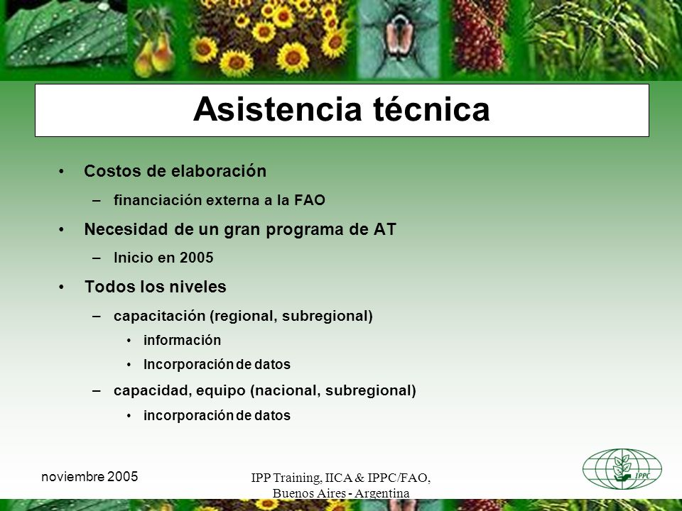 IPP Training, IICA & IPPC/FAO, Buenos Aires - Argentina noviembre 2005 Asistencia técnica Costos de elaboración –financiación externa a la FAO Necesid
