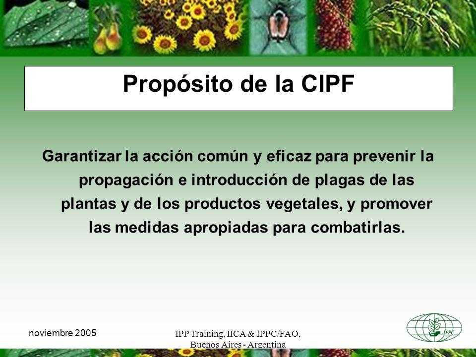 IPP Training, IICA & IPPC/FAO, Buenos Aires - Argentina noviembre 2005 Propósito de la CIPF Garantizar la acción común y eficaz para prevenir la propa