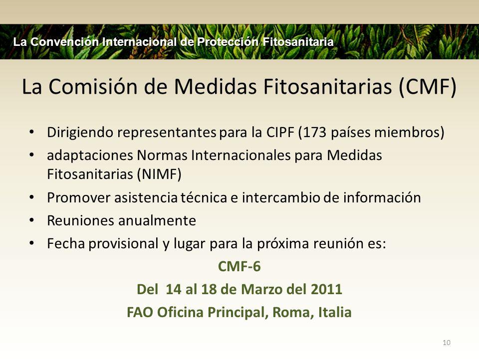 CMF Entes Administrativos Agencia (7 miembros) Comité de Normas (25 miembros) Órgano auxiliar para la solución de diferencias (OASD) Grupos Informales de Trabajo 11 La Convención Internacional de Protección Fitosanitaria