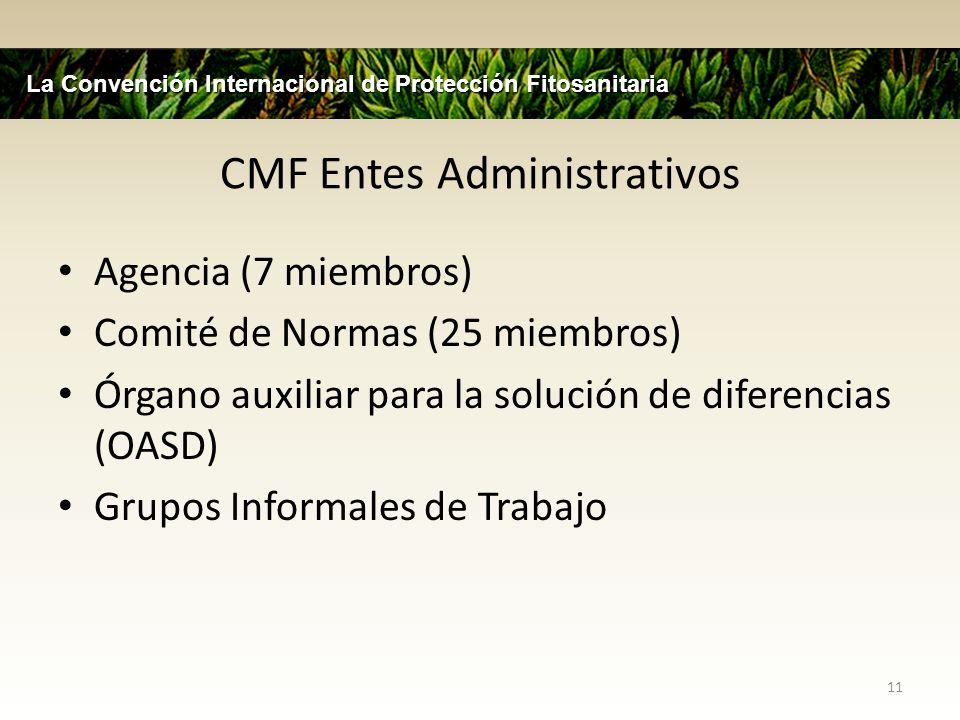 Comité de Normas (CM) Grupo de 25 expertos internacionales de las 7 regiones de la FAO Dos reuniones anuales (Mayo y Noviembre) Vigilantes de las normas establecidas en el proceso – Especificaciones aprobadas por NIMFs, planes aprobados NIMFs por la consulta de los miembros, revisiones de los comentarios de los miembros, recomendaciones NIMFs para aprobación de la CMF 12 La Convención Internacional de Protección Fitosanitaria