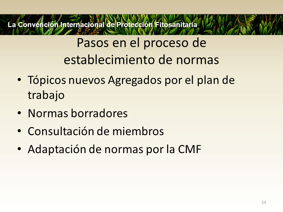 Pasos en el proceso de establecimiento de normas Tópicos nuevos Agregados por el plan de trabajo Normas borradores Consultación de miembros Adaptación