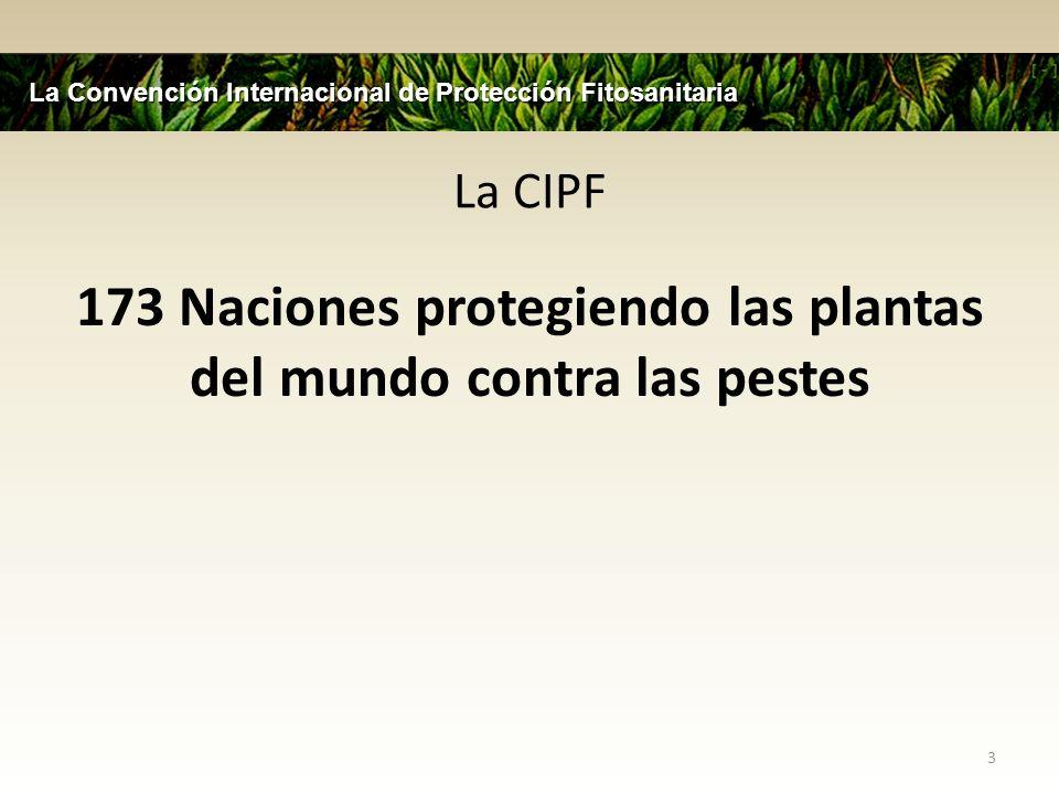 La CIPF 173 Naciones protegiendo las plantas del mundo contra las pestes 3 La Convención Internacional de Protección Fitosanitaria