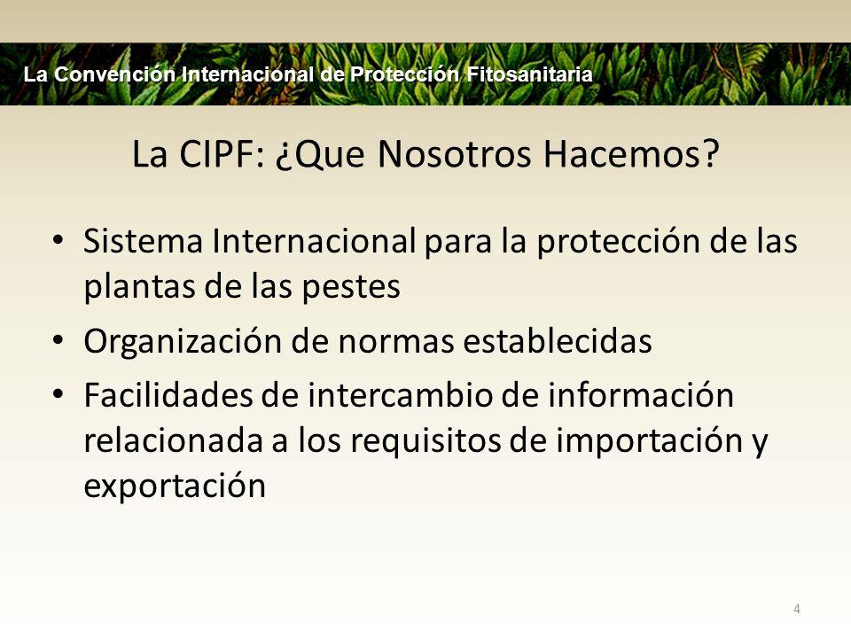 La CIPF: ¿Que Nosotros Hacemos? Sistema Internacional para la protección de las plantas de las pestes Organización de normas establecidas Facilidades