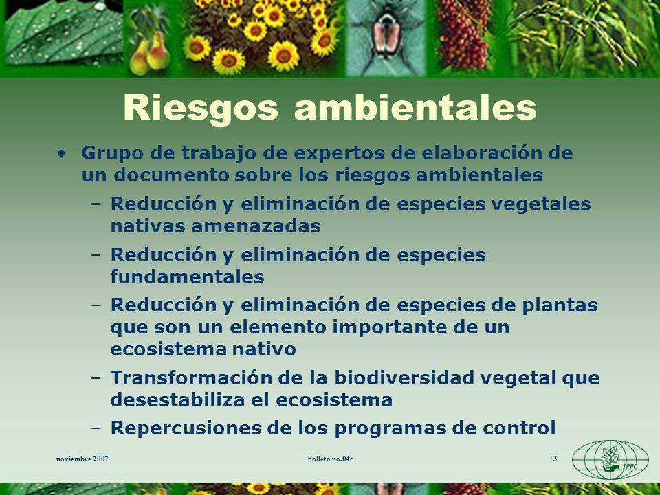 noviembre 2007Folleto no.04c13 Riesgos ambientales Grupo de trabajo de expertos de elaboración de un documento sobre los riesgos ambientales –Reducció