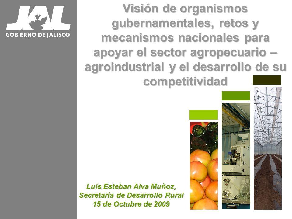 Visión de organismos gubernamentales, retos y mecanismos nacionales para apoyar el sector agropecuario – agroindustrial y el desarrollo de su competit