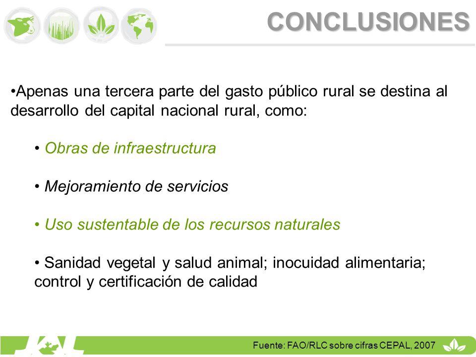 CONCLUSIONES Apenas una tercera parte del gasto público rural se destina al desarrollo del capital nacional rural, como: Obras de infraestructura Mejo