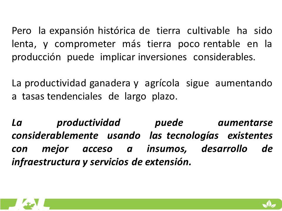 Pero la expansión histórica de tierra cultivable ha sido lenta, y comprometer más tierra poco rentable en la producción puede implicar inversiones con