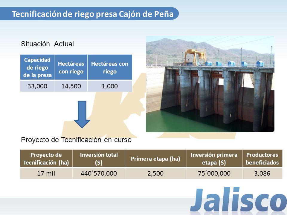 Tecnificación de riego presa Cajón de Peña Capacidad de riego de la presa Hectáreas con riego 33,00014,5001,000 Proyecto de Tecnificación en curso Sit