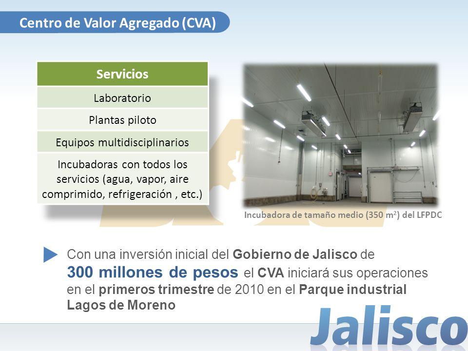 Incubadora de tamaño medio (350 m 2 ) del LFPDC Centro de Valor Agregado (CVA) Servicios Laboratorio Plantas piloto Equipos multidisciplinarios Incuba
