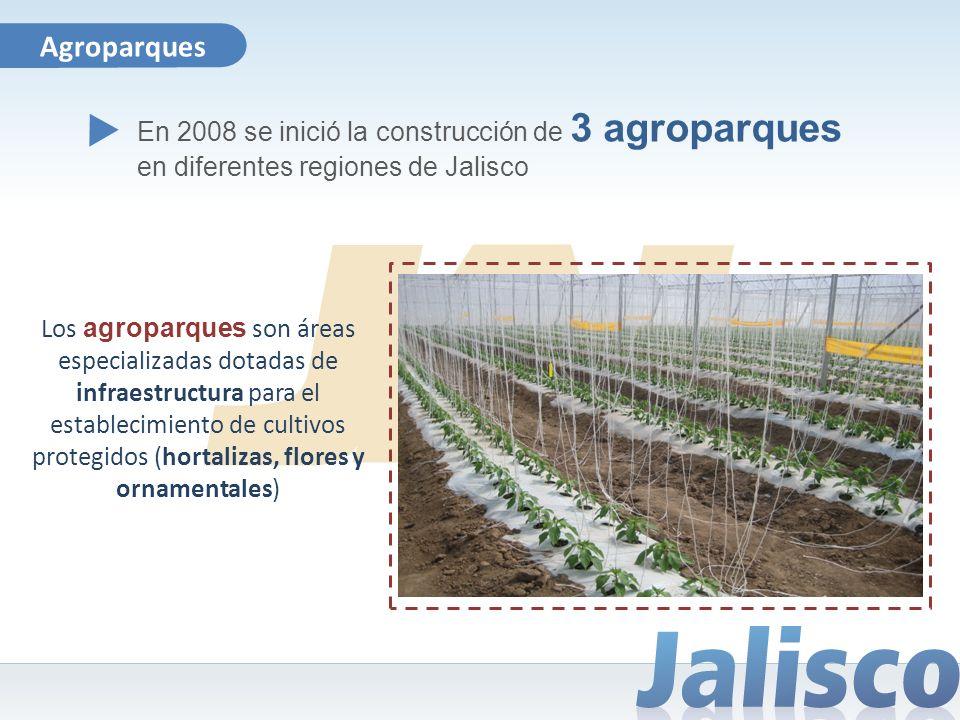 Agroparques En 2008 se inició la construcción de 3 agroparques en diferentes regiones de Jalisco Los agroparques son áreas especializadas dotadas de i