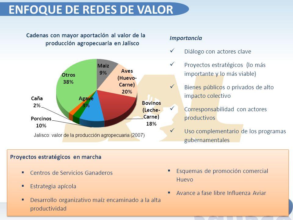 Cadenas con mayor aportación al valor de la producción agropecuaria en Jalisco Jalisco: valor de la producción agropecuaria (2007) Proyectos estratégi