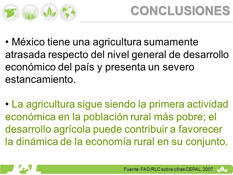 CONCLUSIONES México tiene una agricultura sumamente atrasada respecto del nivel general de desarrollo económico del país y presenta un severo estancam